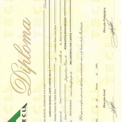 tecla-2000-2009 (3)