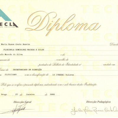 tecla-2000-2009 (4)